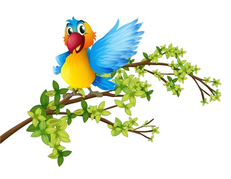 cartoon parrot: Illustration of a colorful parrot on a branch of a tree on a white background