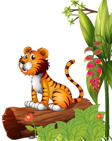 tigre caricatura: Ilustraci�n de un tigre encima de un tronco en un fondo blanco