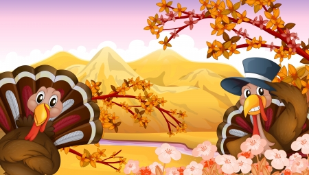 caruncle: Illustration of two turkeys in autumn view Illustration