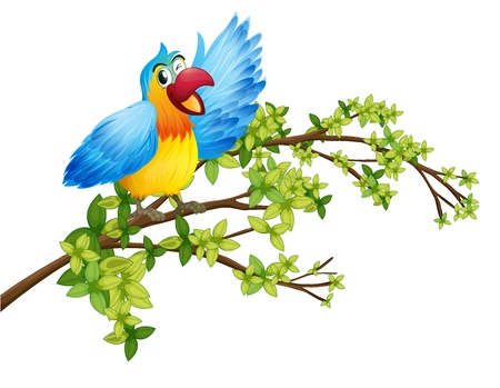 Illustration of a parrot on a branch of a tree on a white background Vector