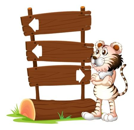tigre caricatura: Ilustración de un tigre y los letreros sobre un fondo blanco