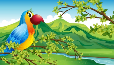 jungle scene: Illustration of a parrot on a branch of a tree