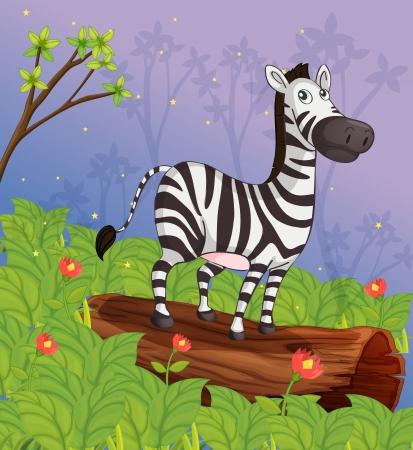 rumsteak: Illustration d'un z�bre dans le jardin
