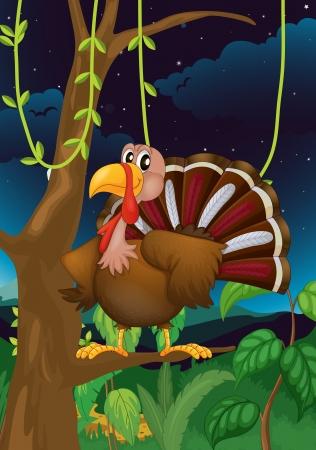 wattle: Illustration of a turkey on a branch of a tree Illustration