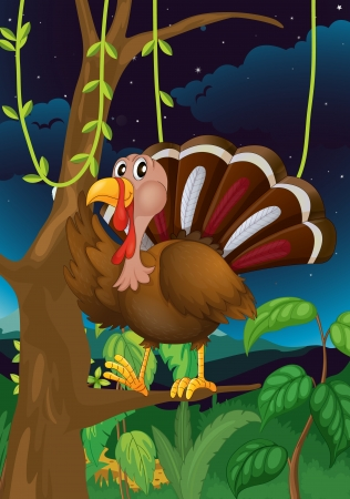 caruncle: Illustration of a turkey in the middle of the night