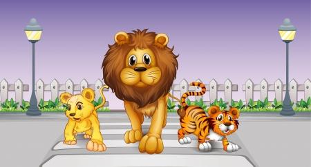 pedestrian crossing: Illustration of wild animals in the street