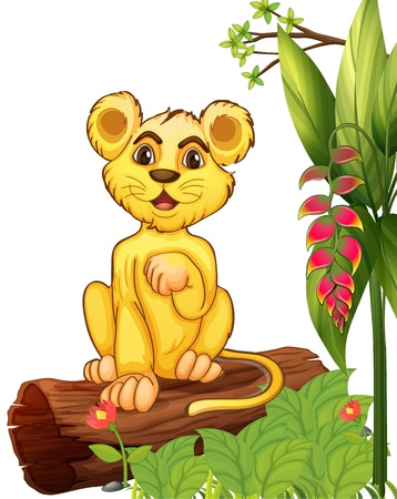 Illustration of a little tiger sitting in a wood on a white background  Vector