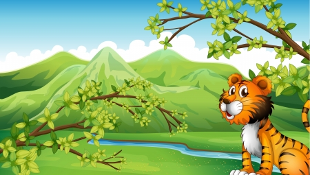 bush babies: Illustration of a tiger in a mountain scenery