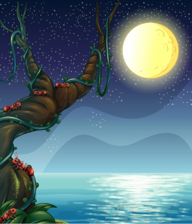 pict: Illustration of the bright moon and the big tree