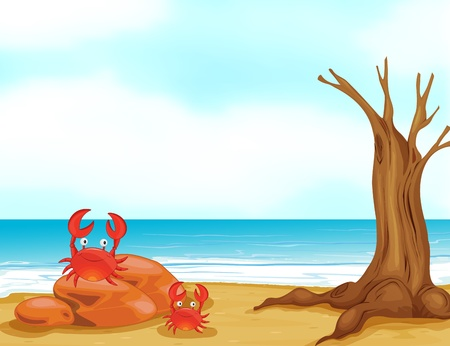 Illustration of crabs on a beautiful beach Vector