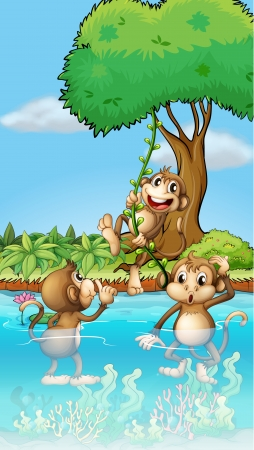 water weed: Illustration of three monkeys playing  Illustration