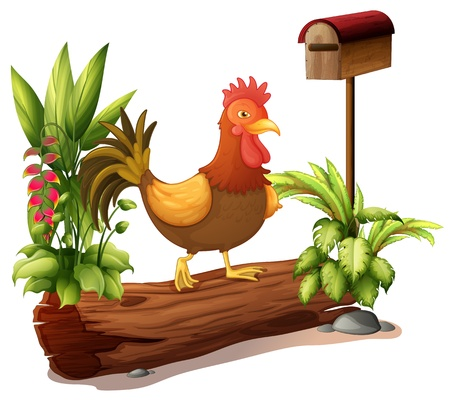 pict: Illustration of a rooster above a trunk on a white background