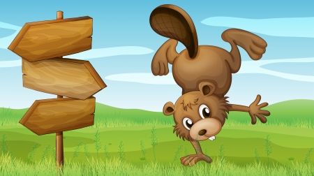 Illustration of a beaver and the signboard Vector