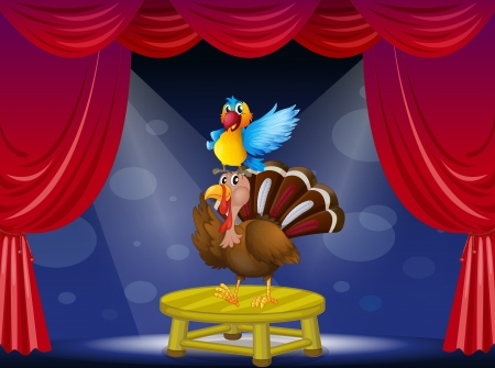 caruncle: Illustration of a parrot and a turkey at the stage Illustration