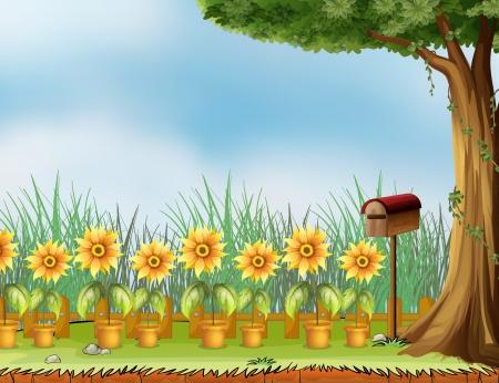 sunflower field: Illustration of a garden with a birds house