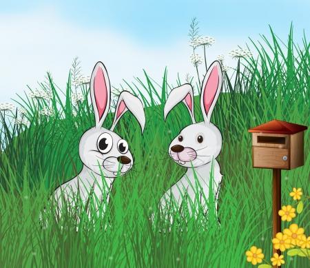 Illustration of rabbits near the mailbox Stock Vector - 17892387