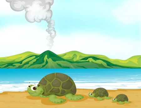 illustration of a volcano erupting: Illustration of a volcano beach and turtles