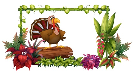 caruncle: Illustration of a turkey in the garden on a white background Illustration