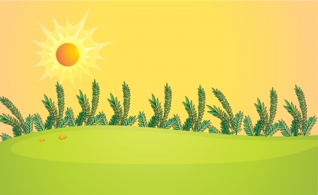 pict: Illustration of a very bright sun