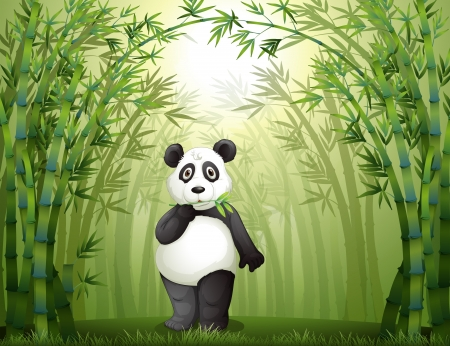 misty forest: Illustration of a panda in the bamboo forest Illustration