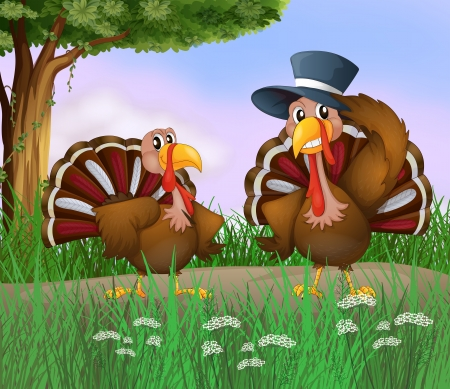 caruncle: Illustration of two turkeys along the road
