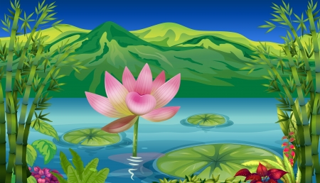 lily pad: Illustration of a lake and a beautiful landscape