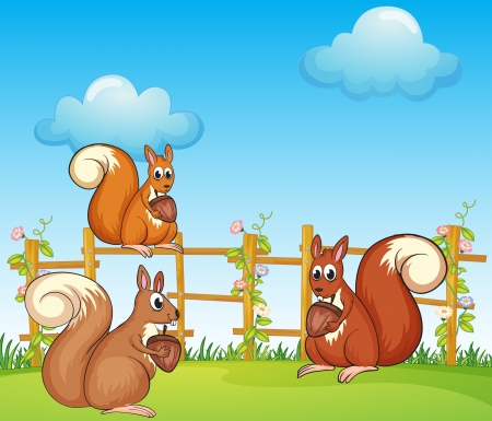 Illustration of squirrels at the garden Stock Vector - 17889329