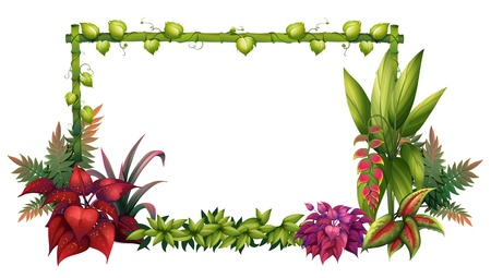 bamboo border: Illustration of a garden on a white background