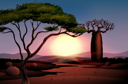 desert sunset: Illustration of a tree and a beautiful landscape