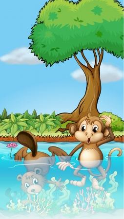 Illustratie van een aap en een bever in de vijver