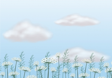 pict: Illustration of flowers under the blue sky