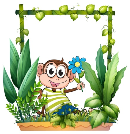Illustration of a monkey holding a flower on a white background Vector
