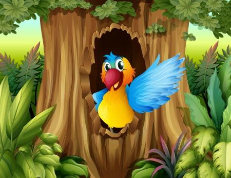 ocas: Ilustración de un pájaro en un árbol hueco