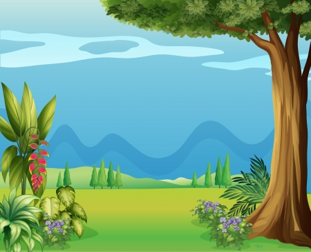 Illustration of the natural view of mother nature Vector