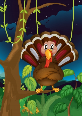 caruncle: Illustration of a turkey standing on a branch of a tree