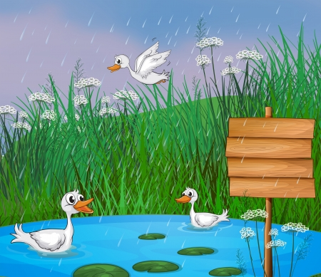 Illustration of ducks playing in the rain Vector