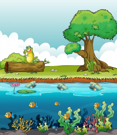 river bank: Illustration of a river and a smiling frog on a dry wood