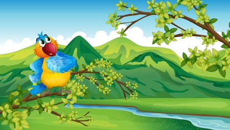 Illustration of a parrot across the river Stock Vector - 17895722