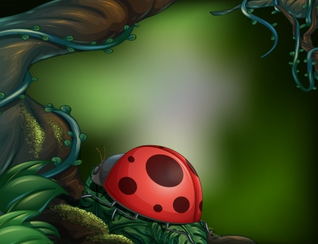 Illustration of a ladybug in a beautiful forest Vector