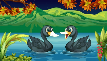 Illustration of two ducks in the river Vector