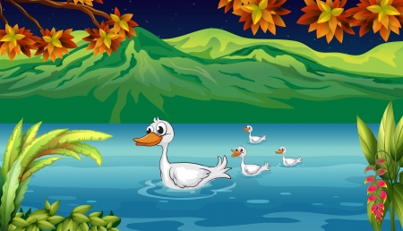 Illustration of a mother duck and her ducklings in the river Vector
