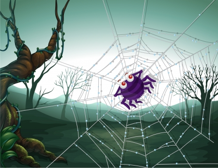 spiderweb: Illustration of a spiderweb in the woods