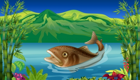 seafoods: Illustration of a big fish in the sea