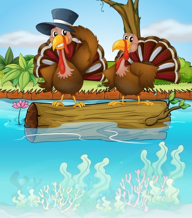 caruncle: Illustration of two turkeys above a trunk of a tree