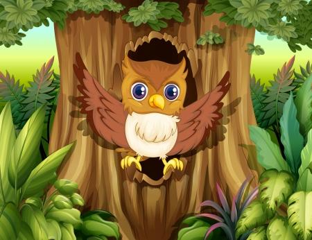 ocas: Ilustración de un árbol hueco con un búho