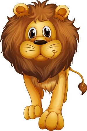 lions: Ilustraci�n de un le�n grande en un fondo blanco