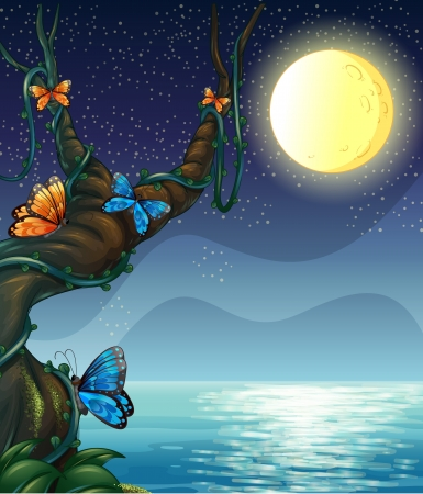 beach butterfly: Illustration of the full moon  Illustration
