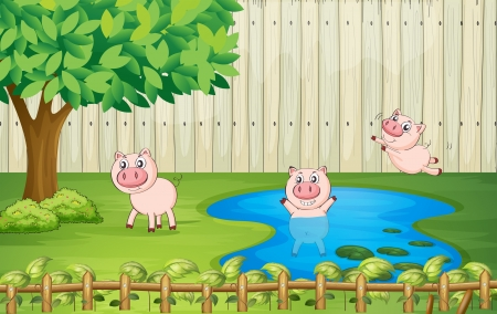 piglets: Illustration of pigs in the backyard
