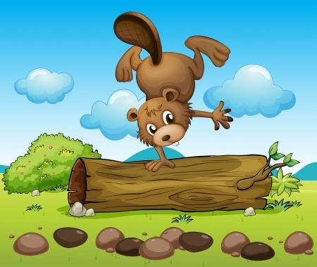 balancing: Illustration of a beaver balancing