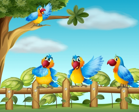 fenced: Illustration of colorful parrots at the fenced garden Illustration